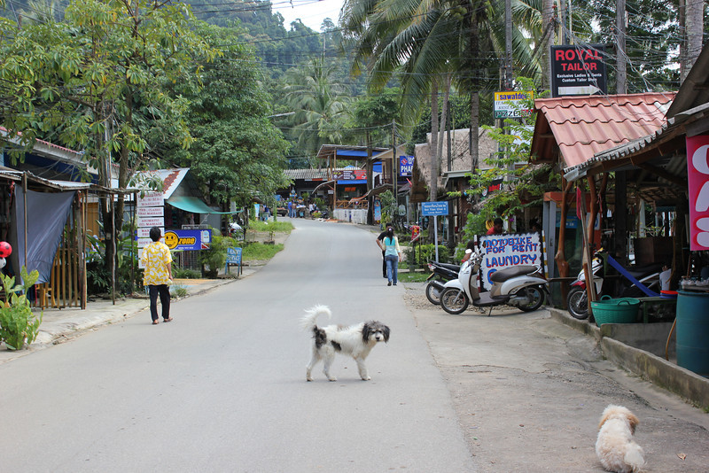 Road in Koh Chang lined with restaurants and bars.